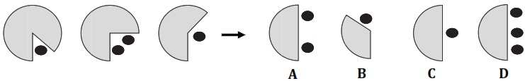 Test psychologique analogie visuelle t7-015