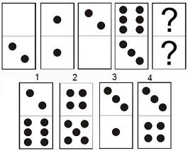 dominos-001-006