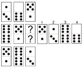 dominos-001-017