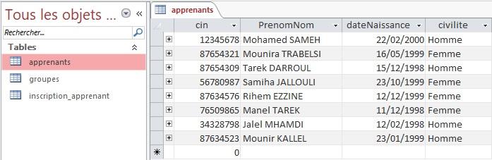 Afficher les enregistrements d'une table Access dans un DataGridView
