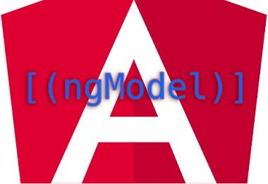 Angular NgModel
